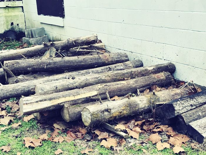 Stack Day No People Log Wood - Material Outdoors Large Group Of Objects Close-up