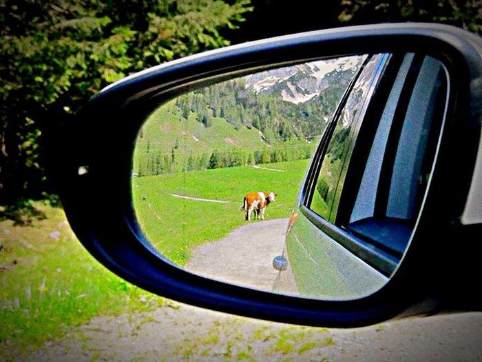 Vanishing Point SalzburgerLand Mountains Taking Photos Portrait Of A Friend Bischofsmütze