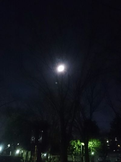 moon Relaxing Tokyo Night Sky Moonlight