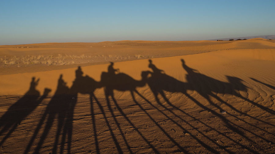 Shadow of persons on sand dune in desert