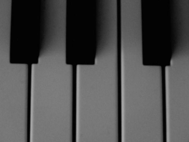 It doesn't matter black or white Piano Keys Piano Black And White Black White Black & White Collection Understated Grainy Detail Music Keyboard Keys Canon