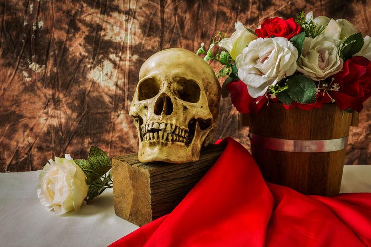 Still life with skull man Halloween Bone  Bouquet Human Skeleton Human Skull Red Rosé Rose - Flower Skull Still Life