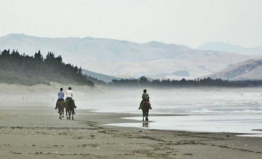 Rear view of people riding horses at beach