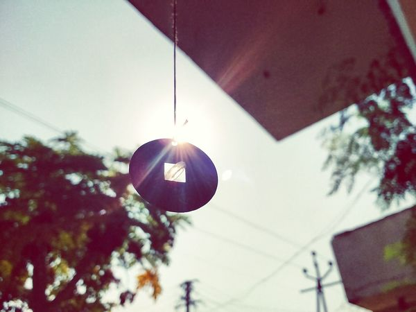 Afternoon Low Angle View Hanging Illuminated Outdoors No People Day Tree Nature Sky
