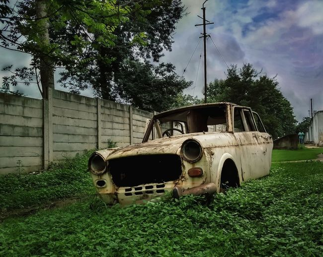 OldCarModels Oldcars Mode Of Transport Day Green Color Damaged Grass Tree No People Transportation Land Vehicle Abandoned Oldisgold Premier Indiapictures Indianphotography Indiaclicks Yourshot Myperspective Garbage Rusty Things Automobile Backyard Photography Outdoors Oldmodel