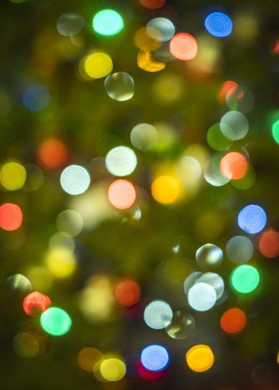 Holiday Bokeh Celebration Christmas Christmas Decoration Christmas Lights Christmas Tree Defocused Green Color Illuminated