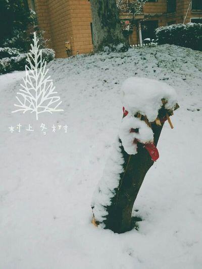 Snow ❄ Bye Bye Winter Hello Spring First Eyeem Photo