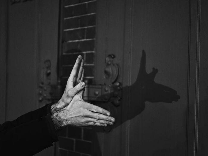Cropped Image Of Hand Making Bird Shadow On Wall