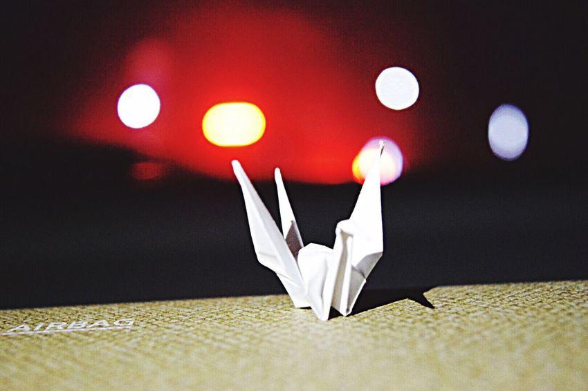 悔しさを原動力に変えて、生きていこう。 折り鶴 Light Japan