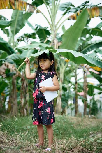 Full length of cute girl holding banana leaf outdoors