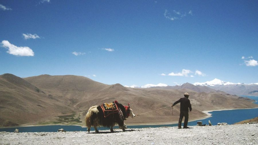 Side view of a man with animal against mountain range