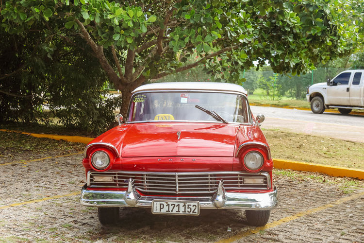 Vintage red ford taxi on parking lot, Cuba, Varadero, 4 November 2016 Mode Of Transportation Tree Transportation Red Car Motor Vehicle No People Outdoors Retro Styled Day Land Vehicle Nature Travel Taxi Ford Vintage Vintage Car Cuba Varadero Cuba. Varadero Road