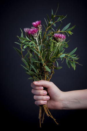 Black Background Close-up Flower Fragility Freshness Green Color Herbal Medicine Holding Human Body Part Human Hand Indoors  Leaf Nature One Person Studio Shot EyeEmNewHere