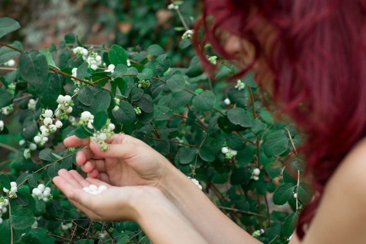 Close-up Cropped Freshness Green Color Growth Hair Hands Hands At Work Holding Leaf Person Plant Red Hair Unrecognizable Person