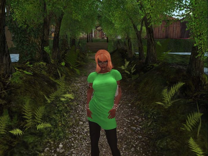 St Patrick's Day Leisure Activity Secondlife Beauty In Nature
