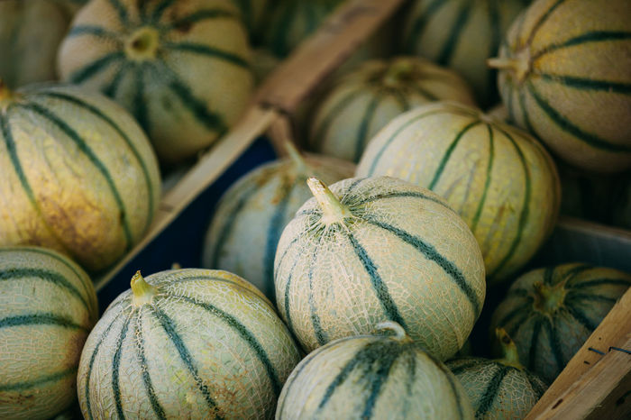 Fresh ripe melons forming background on farmers market Green Market Melons Background Close-up Farmers Food Food Stories Fresh Organic Ripe Summer