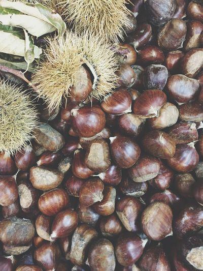 Xmas.. Chestnut Christmastime Christmas Time Showcase: November Simplicity Everyday Joy EyeEm Best Shots EyeEm Nature Lover EyeEm Gallery