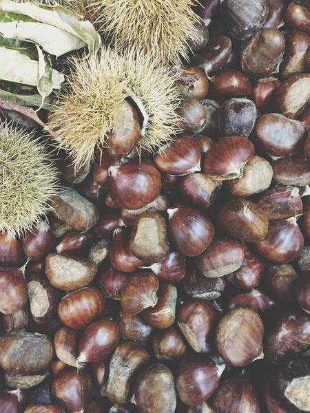 Xmas.. Chestnut Christmastime Christmas Time Showcase: November Simplicity Everyday Joy EyeEm Best Shots EyeEm Nature Lover EyeEm Gallery