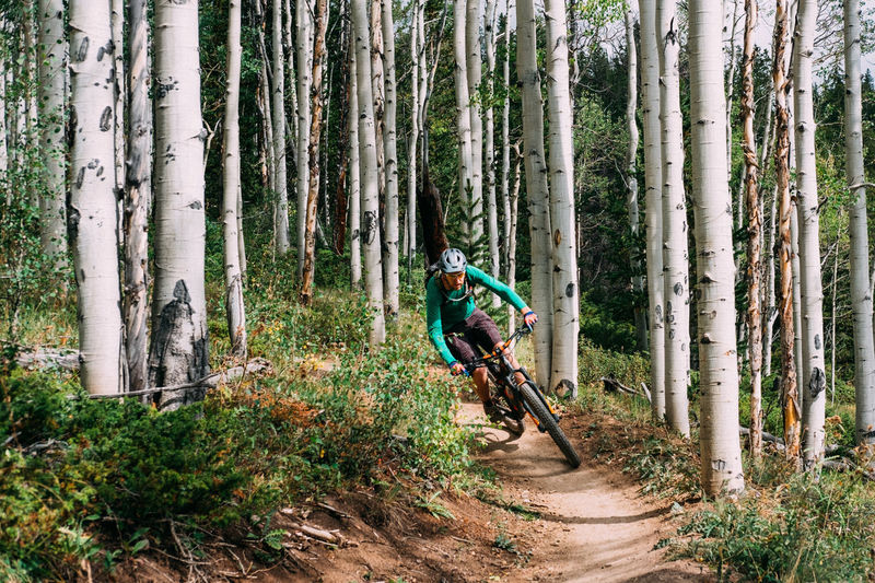 Man riding bicycle in forest