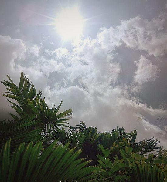 Landscape Nature Sunrise Sunshine Open Edit Afrernoon