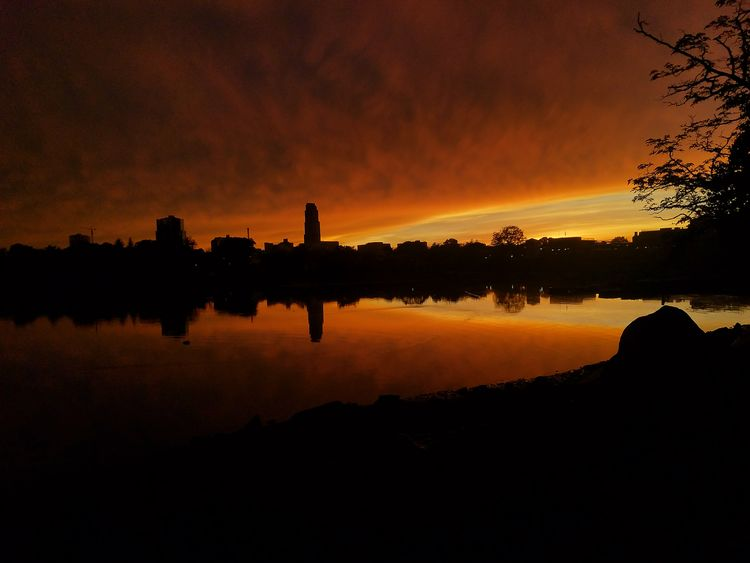 A perfect end to a stormy day!! Sunset photo taken at Five Islands Park, New Rochelle on May 15th, 2018. Spring Orange Color Water Tree Sunset Silhouette Reflection Sky Landscape Shore