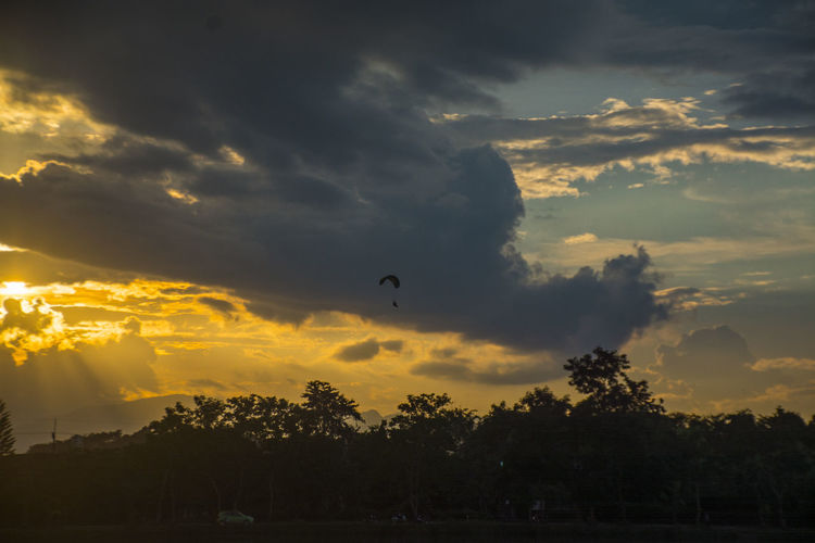 glider parachute Sky Beautiful Water Reflection. Glider Parachute Sky Cloud - Sky Sunset Tree Plant Beauty In Nature Flying Silhouette Scenics - Nature Mid-air Nature Animal Themes Tranquility Bird Animal Tranquil Scene Animals In The Wild Low Angle View Vertebrate No People Outdoors