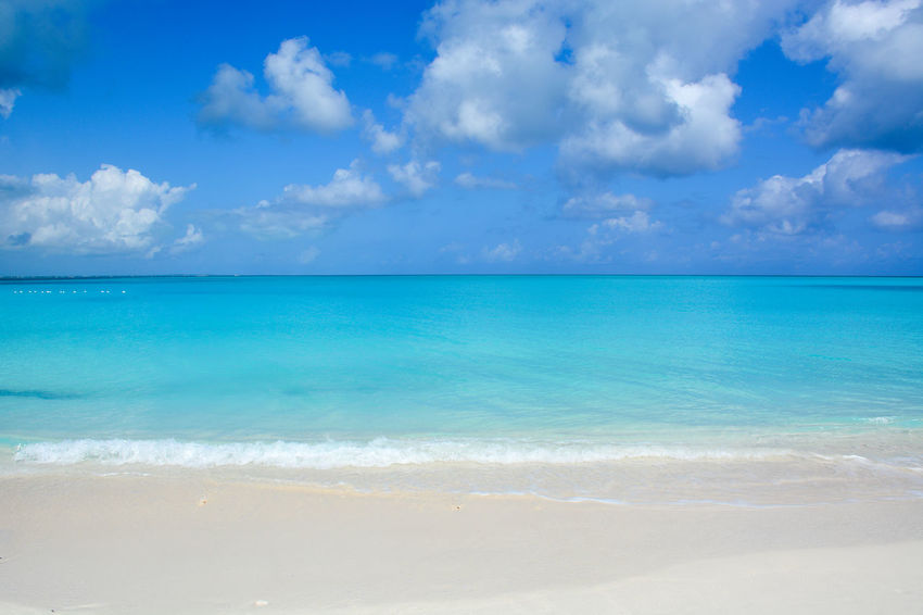 Turquoise Water Turquoise Sea Beach Caribbean Island Beautiful Nature Horizon Horizon Over Water Ocean And Sky Turks And Caicos Beach Turks And Caicos Islands Provo Ocean View Grace Bay Beach Grace Bay Sunset Grace Bay Providenciales Turks And Caicos Sunset Sea And Sky Caribbean Luxury Life Turks And Caicos No People Richness Blue Water Daylight The Traveler - 2018 EyeEm Awards