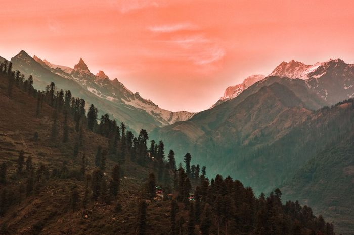 The last rays Tree Plant Sky Mountain Beauty In Nature Scenics - Nature Environment Sunset Pinaceae Coniferous Tree Land Forest Tranquil Scene Landscape Tranquility No People Nature Pine Woodland Mountain Range Pine Tree The Great Outdoors - 2018 EyeEm Awards The Still Life Photographer - 2018 EyeEm Awards