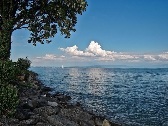View to Lake Constance at Romanshorn in Switzerland. Beauty In Nature Blue Bushes Clouds Day Hills Idyllic Lake Constance Nature No People Outdoors Romashorn Sail Boat Scenics Shore Sky Stones Switzerland Tranquil Scene Tranquility Tree Water