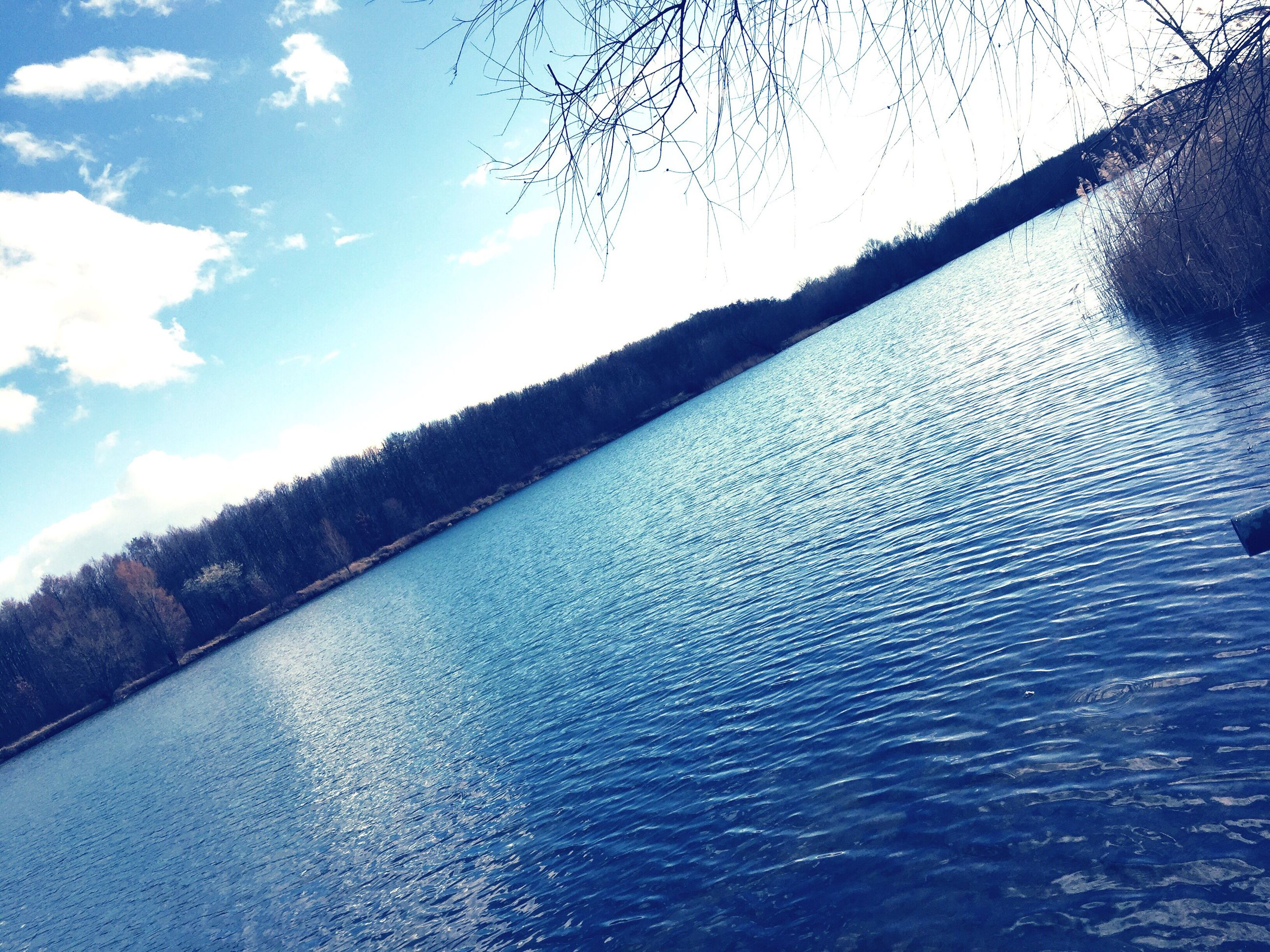 water, waterfront, tranquility, tranquil scene, tree, sky, rippled, scenics, nature, beauty in nature, river, lake, day, idyllic, outdoors, no people, cloud - sky, non-urban scene, cloud, blue