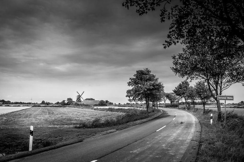 Road Tree Plant Transportation Sky Direction The Way Forward Cloud - Sky Landscape Nature Field No People Rural Scene Diminishing Perspective Day Environment Land Tranquil Scene Tranquility Outdoors Long