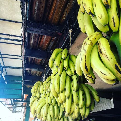 Banana Fruit Healthy Eating Food And Drink Food Freshness No People Banana Tree Business Finance And Industry Indoors  Day Supermarket