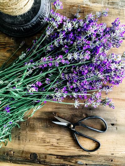 Cut lavender Arrangement Beauty In Nature Blue Close-up Cut Day Flower Flowers Fragility Freshness Growth Lavender Lavendu Multi Colored Nature No People Petal Plant Purple Scissors Still Life String Variation Wood - Material Wooden