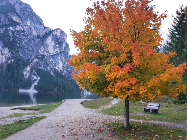 Fantastic Landscape Naturaleza Naturalmonument Fantastic_earth Trekking Nature Love Tranquil Scene EyeEm Nature Lover Tourist Attraction  Autumn Tree Nature Beauty In Nature Tranquility Lake Landscape Mountain No People Water Nature Travel Paisaje Nature_collection EyeEm Gallery Senderos TrekkingDay Südtirol Italy Travel Destinations Montañas❤ Calm