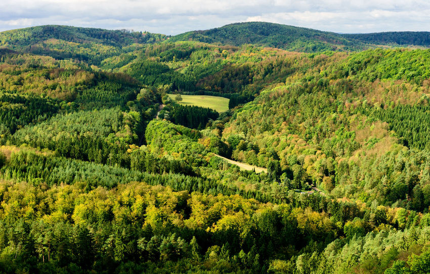 View from Wartburg Castle - viewing West direction Wartburg Wartburg In Eisenach/ Germany Famous Place Forest Green Color Landscape Lush Foliage Nature No People Outdoors Scenics Tree Wartburg Eisenach