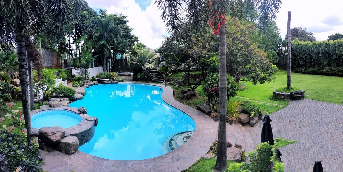 Water Swimming Pool Tree Tranquility Day Tranquil Scene Outdoors Sky Nature No People Panoramic Blue Palm Tree Growth Beauty In Nature Scenics Hot Spring Photography Jaysalvarez