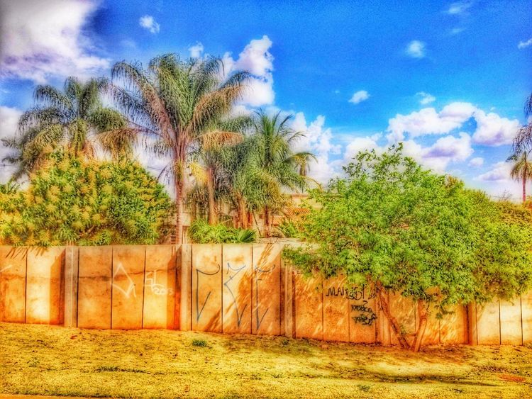 Hdr Remiximage Drama Orton HDR HDRInfection EyeEm Best Shots - HDR