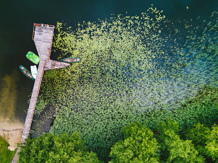 Aerial view of boats moored by jetty on lake