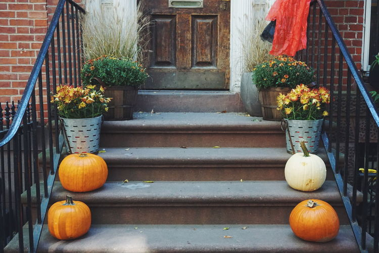 Potted Plants And Pumpkins On Staircase Outside House