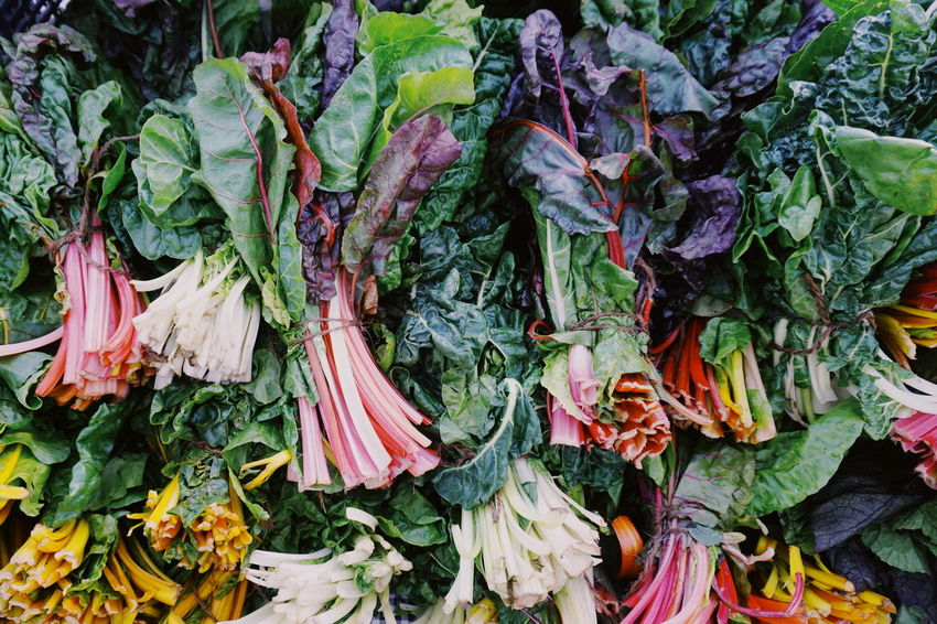 Farmers Market Rhubarb Stalk Backgrounds Close-up Day Food Food And Drink Freshness Full Frame Green Color Healthy Eating High Angle View Leaf Lettuce Market Nature No People Outdoors Raw Food Retail  Rhubarb Rhubarb Leaves Variation Vegetable Vegetables