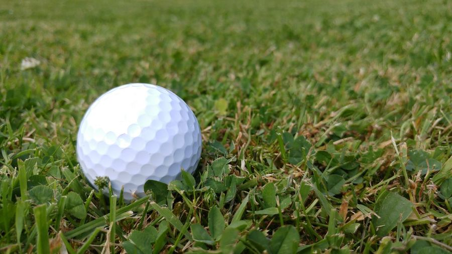Golf Golf Ball Grass Ball Close-up Outdoors Day No People Green White