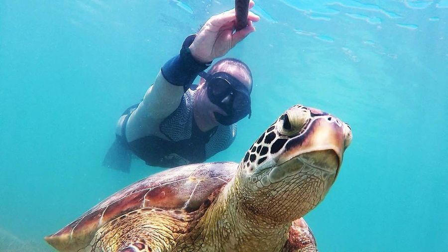 Low angle view of man scuba diving by turtle in sea