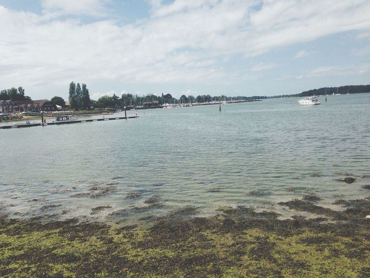 Chichester Harbour Sunny Warm Walk Enjoying Life Happy Thoughts Peaceful Pretty