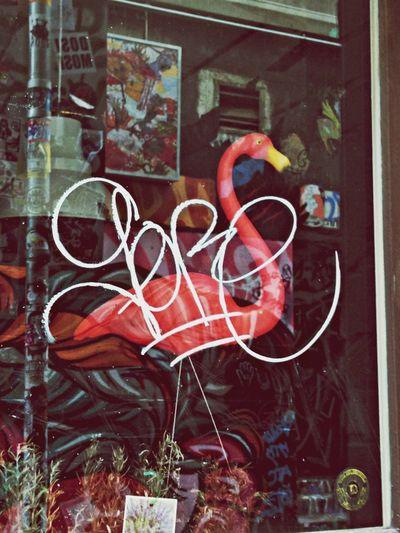 Urban Tagging Mingos Fashion