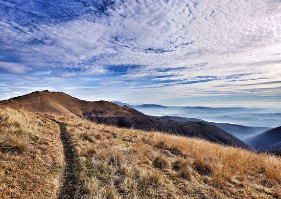 Landscape Landscape_Collection Landscape_photography Mountain Como Como Lake Mysweethome