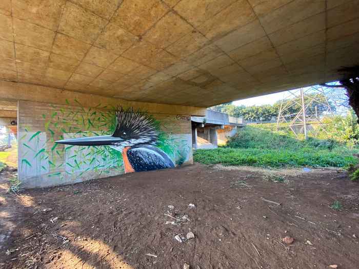 Graffiti on bridge in tunnel