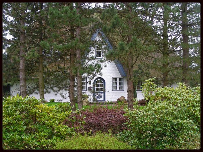 House Insel Föhr