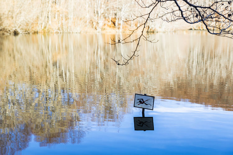 No swimming No Swimming Santa Fe Lake Water Reflection Communication Sign Nature No People Tree Day Plant Tranquility Beauty In Nature Tranquil Scene Bare Tree Outdoors Waterfront Text Warning Sign Branch
