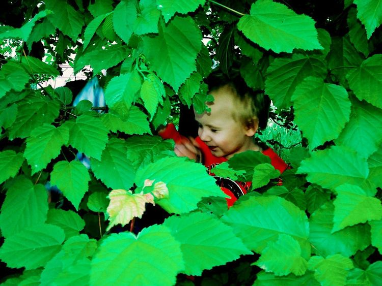 Green Color Leaf Plant One Person Nature Tree Girls Childhood Child Outdoors Growth Beauty In Nature Day Real People Close-up People