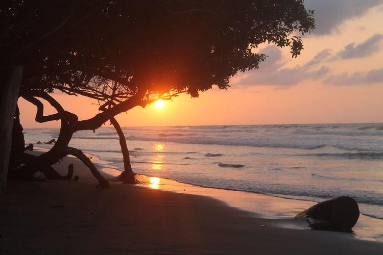 Amazing sunset over the sea in Puerto Escondido, Colombia Amazing Amazing Nature Beach Horizon Over Water Nature Sea Sky Sun Sunset Tree